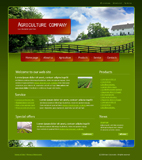 Voorbeeld van Industrial and History_303 Webdesign